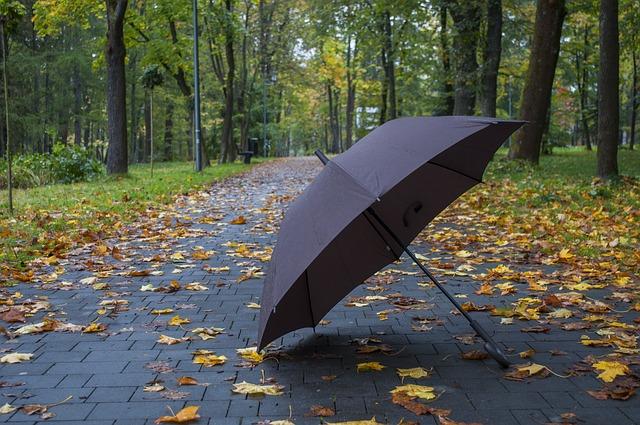 deštník na chodníku