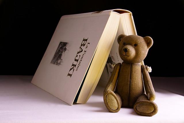 kniha a medvídek