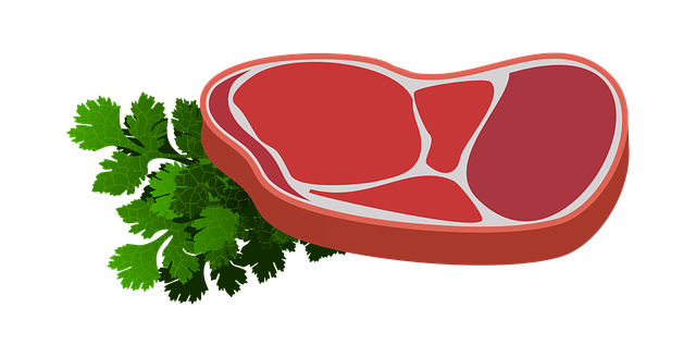 maso aneb zdroj bílkovin